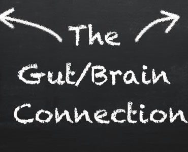 Gut Brain Connection Banner