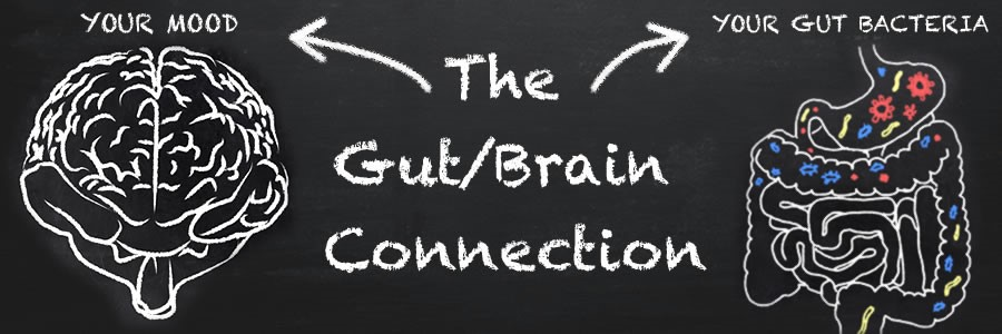 Gut Brain Connection Broadcast