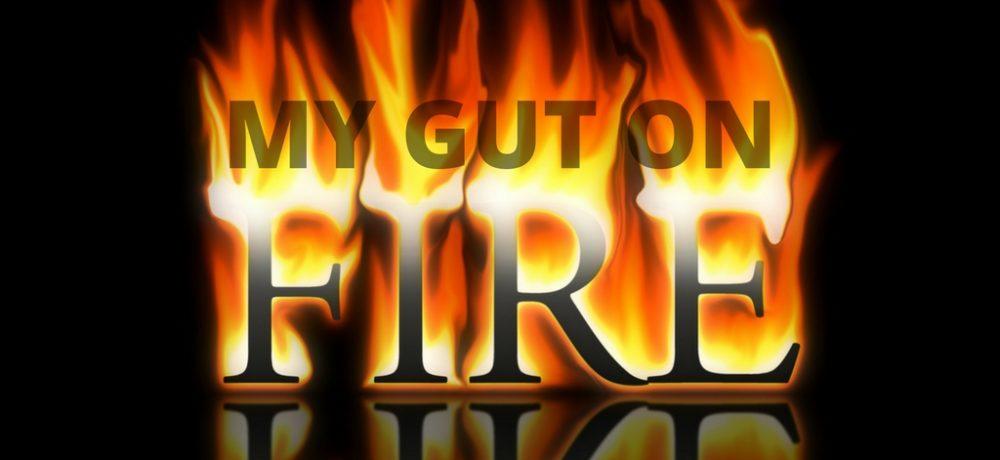 gut-fire-blog