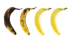 Rotting Banana